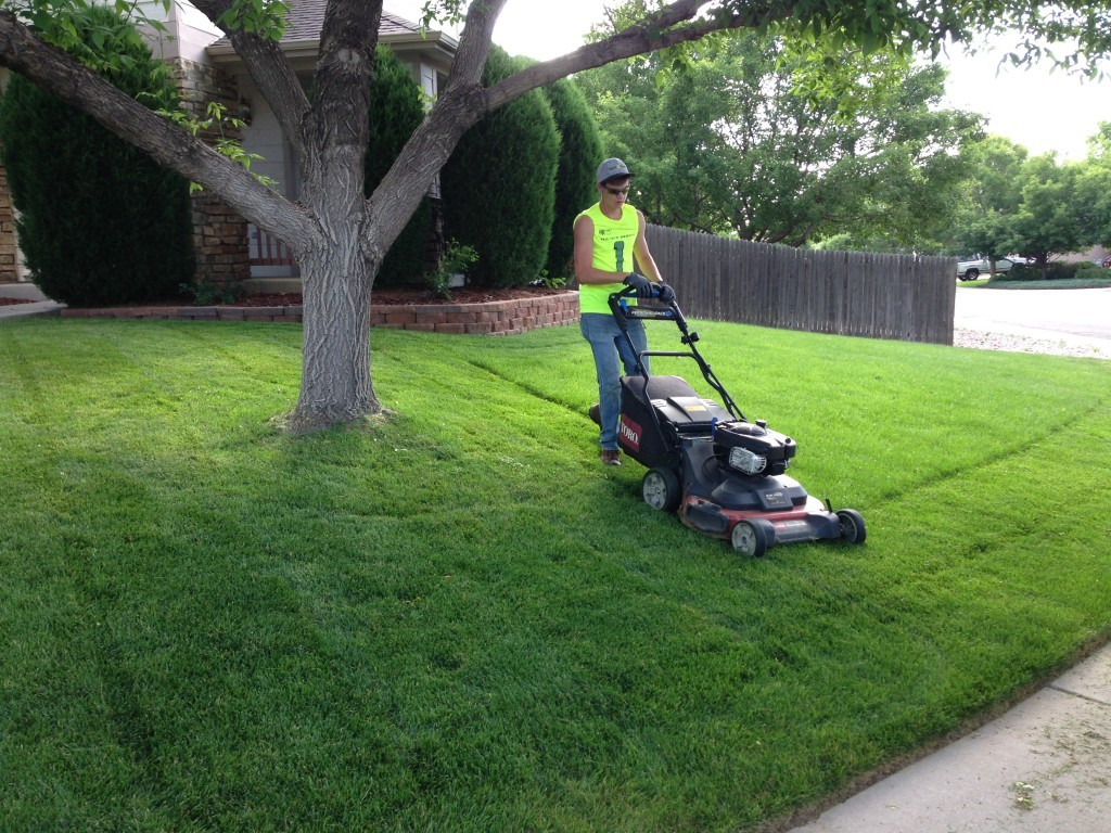 Lawn Service-Arlington TX Landscape Designs & Outdoor Living Areas-We offer Landscape Design, Outdoor Patios & Pergolas, Outdoor Living Spaces, Stonescapes, Residential & Commercial Landscaping, Irrigation Installation & Repairs, Drainage Systems, Landscape Lighting, Outdoor Living Spaces, Tree Service, Lawn Service, and more.